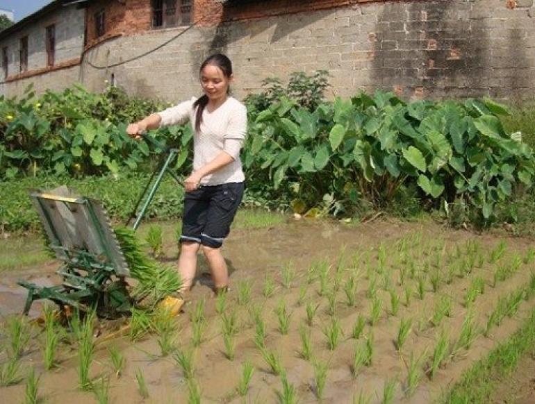 Referensi Peluang Usaha di Desa, Usaha Rumahan Sebagai Sampingan