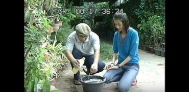 Pembuatan Kompos Cair Aroma Buah