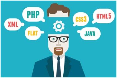 gambar bisnis jasa web developer