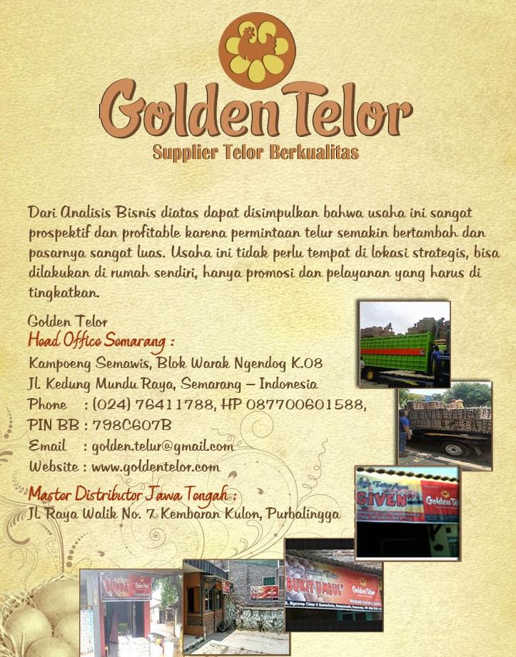 golden telur 15